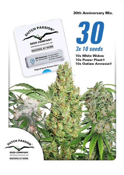 30th Anniversary Mix Feminized Seeds - 30