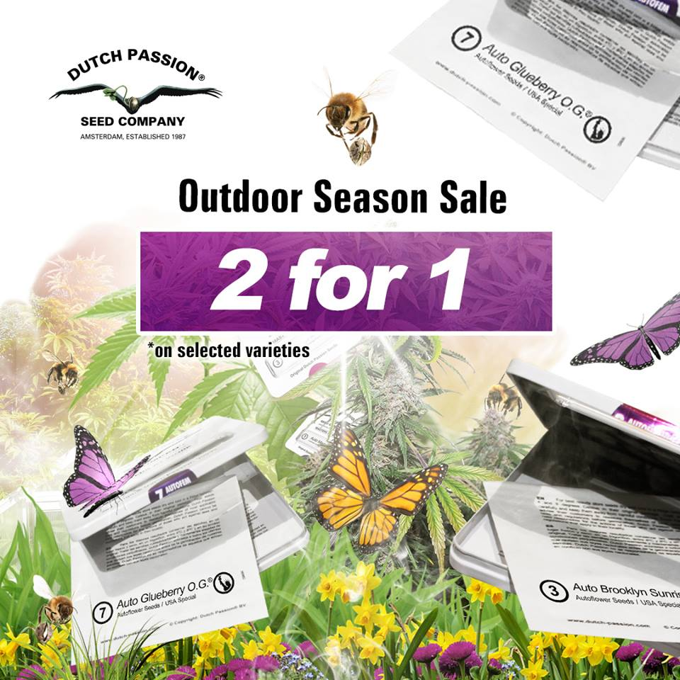 Outdoor Season Sale! Ducth Passion Promo!